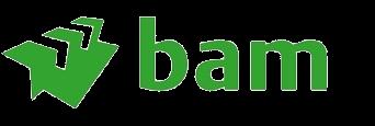 BinT Partner | Bemiddeling in technische professionals